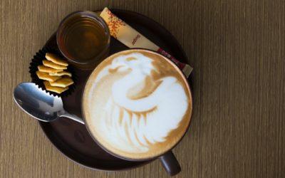 Café Zoom CECORP le 26 août 2021